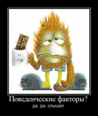 Поведенческие причины ранжирования Yandex'а - что это и для что?